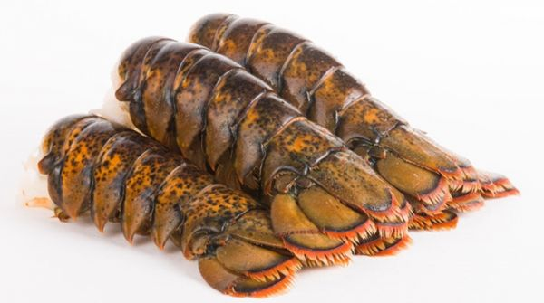 Frozen North Atlantic Lobster Tails