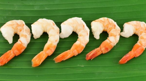 Frozen Cooked White Shrimp